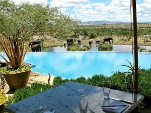 タンザニアのフォーシーズンホテルの風景